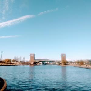 冠水公園ラン