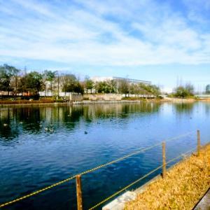 仕事を抜け出しお散歩に【富山:富岩運河環水公園】