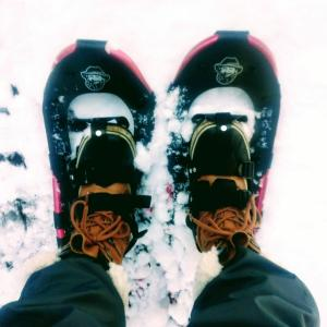 ふわふわの雪を自由自在に歩けるって楽しい!【富山:頼成の森】