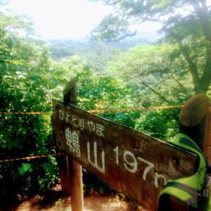 久しぶりの山歩き!楽しかったけど足吊った【富山:頼成の森】