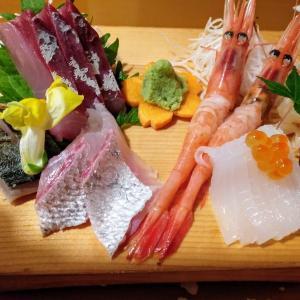 夜の街「桜木町」の居酒屋へ夕方に行く【富山:魚処やつはし】