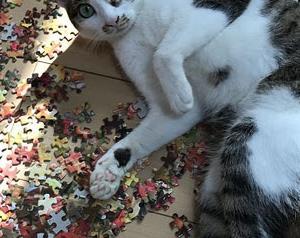 1000ピースパズル