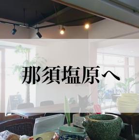 那須塩原+ベトナムのおかって【夜の部を増設】