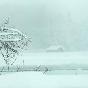 冬の天気は変わりやすい?強風の吹く原因は気圧の差にあった