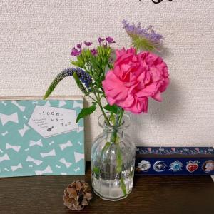 【ちゅび日記】ポストにお花が届く!お花の定期便『Bloomee LIFE(ブルーミーライフ)』