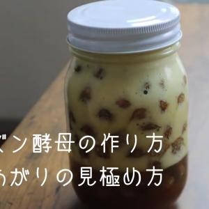 【動画レシピ】レーズン酵母の作り方・出来上がりの見極め方  自家製酵母1