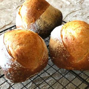 必ずカパっとクープが開く成形の高加水の自家製酵母パン