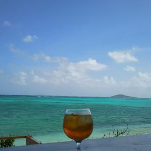 池間島の海のみえるカフェとタコ丼の昼食とおいしい宿の夕食(沖縄の宮古諸島の宮古島と池間島)