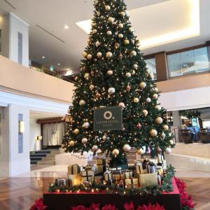クリスマス楽しんでね。与えることができる人は豊かになれる【生きやすくなるために】