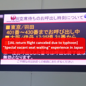 "[JAL return flight canceled due to typhoon] ""Special vacant seat waiting"" experience in Japan"