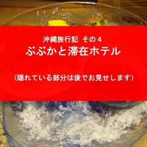 【GTの沖縄旅行記 その4】魚町屋ぶぶかとサザンビーチホテル&リゾート沖縄