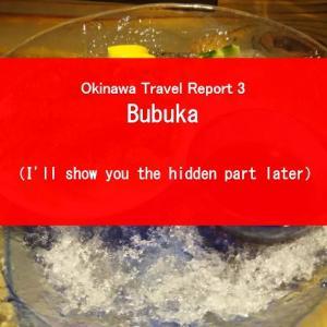 【GT's Okinawa Travel Report Part 4】Bubuka, a tavern