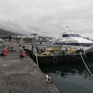 令和元日、初・小島漁港