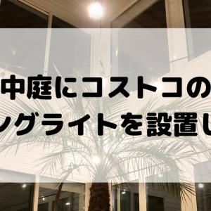【コストコストリングライト】中庭をイルミネーションで飾ってみた【ガーデンライト】