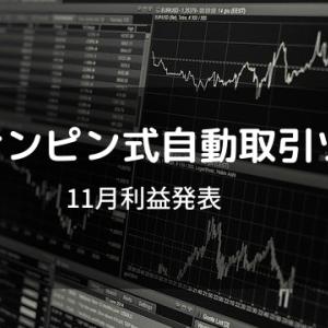 【初心者FX】11月RISナンピン式自動取引ツール 結果