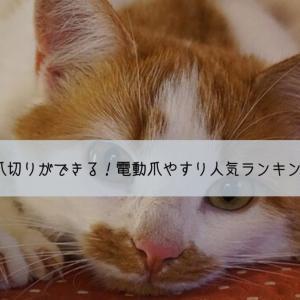 簡単に猫の爪切りができる!猫の電動爪やすりおすすめ人気ランキングベスト5!