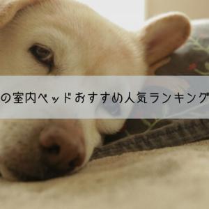 大型犬用の室内ベッドおすすめ人気ランキングベスト10