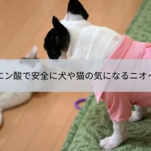 重曹とクエン酸で安心安全に犬や猫、ペットの気になるニオイを撃退しよう!