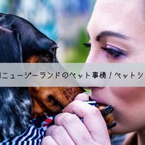 動物愛好家の国ニュージーランドのペット事情!ペットショップがないって本当?