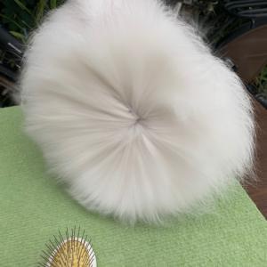アンゴラうさぎの毛で毛糸を作る 1  洗い