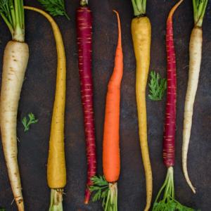 健康に良い根菜を紹介!