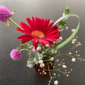 花の定期便ブルーミーライフ500円|今週のお花は・・・♡