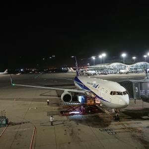 香港から深夜便で帰国。NH822(香港→羽田)エコノミークラス搭乗記