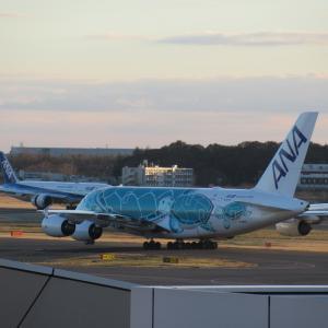 羽田空港国際線増枠分のうち、予定通り就航する路線はいくつあるのか?