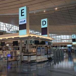 首都圏移動自粛明けの羽田空港の様子