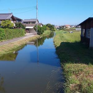 稗田環濠集落 奈良県大和郡山に残る中世城砦集落。散策の後はロールケーキ。