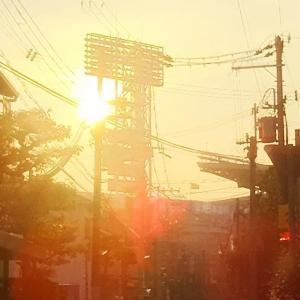2リーグ分裂は、阪神に何をもたらしたか。いかに阪神は関西屈指の人気球団となったのか?阪神タイガースの歴史を読み直す(3)