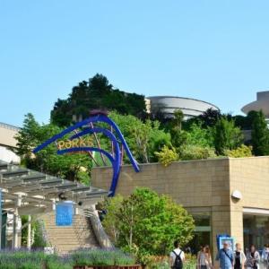 大阪球場が関西プロ野球のメッカだった時代。いかに阪神は関西屈指の人気球団となったのか?阪神タイガースの歴史を読み直す(4)