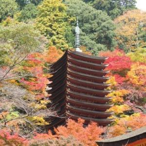 全山神社と化した大和南部の中心寺院とは。奈良県有数の紅葉の名所に残る痕跡。廃仏毀釈(3)多武峰妙楽寺