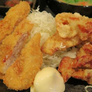 南郷7丁目 なんぶ酒場 とんかつとザンギのハーフ&ハーフ定食!
