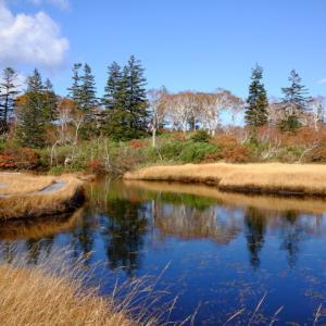 晩秋の神仙沼、ニセコの紅葉
