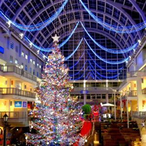 札幌ビアラリー サッポロファクトリーのクリスマスツリーを見たついでにビヤケラー札幌開拓使