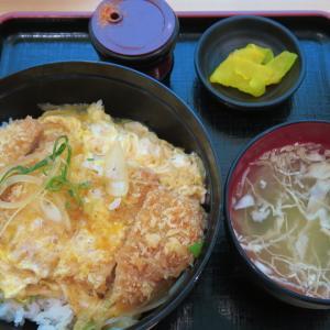 北海道議会食堂 カツ丼