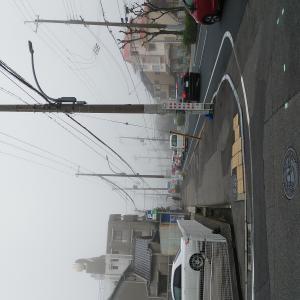 今朝は濃霧で始まりました