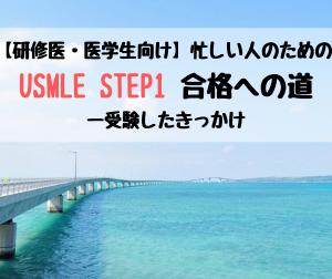 【研修医・医学生向け】忙しい人のためのUSMLE STEP1合格への道ー受験したきっかけ