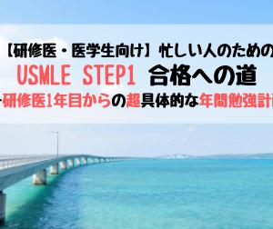 【研修医・医学生向け】忙しい人のためのUSMLE STEP1合格への道ー研修医1年目からの超具体的な年間勉強計画!