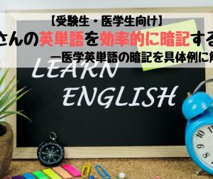 【受験生・医学生向け】たくさんの英単語を効率的に暗記する方法ー医学英単語の暗記を具体例に解説