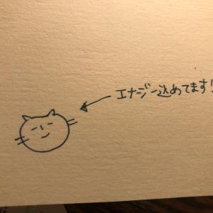 カードのエナジー猫