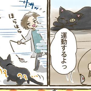 【第33話】活動限界2往復