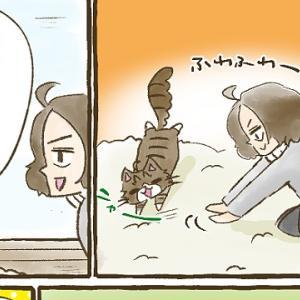 【第44話】子猫編⑧ ひめの弱点?