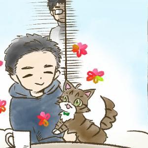 【第45話】子猫編⑨ 仲良くなりたい