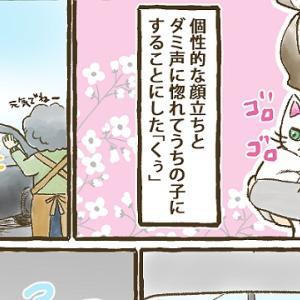 【第47話】子猫編⑪ いつかの予感