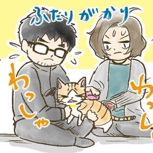 【第53話】続・季節の変わり目