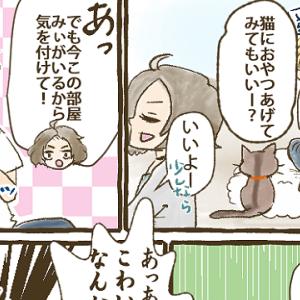 【第23話】みぃと猫初心者