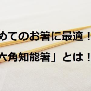 子供の「初めてのお箸」選びに迷っているなら絶対コレ!お箸トレーニングも楽々!!