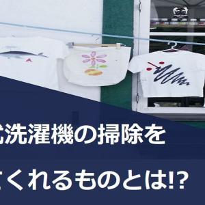 大変なドラム式洗濯機の掃除をリーズナブルなもので楽にしませんか?